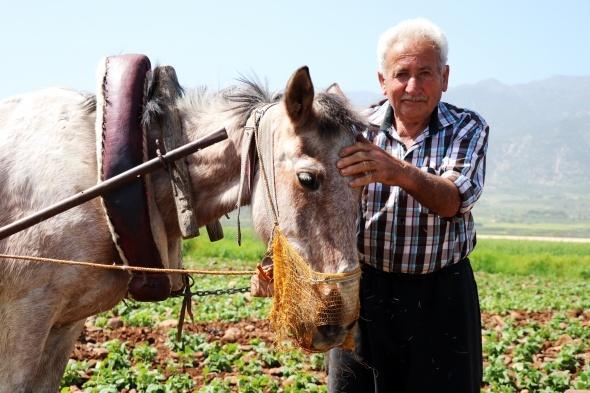 66 yaşında, günlük 150 lira yevmiyeyle çalışıyor