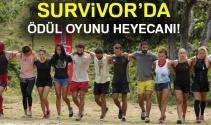 Survivor 6 Nisan ödül oyununu hangi takım kazandı? |SURVİVOR CANLI İZLE..
