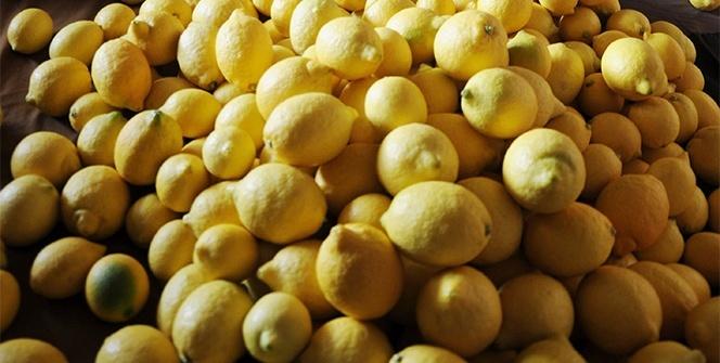 Limon deyip geçmeyin! Bakın mutfak dışı nasıl kullanılıyor...