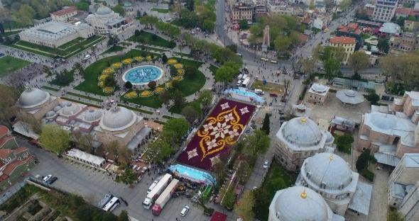 Dünyanın en büyük lale halısı havadan görüntülendi