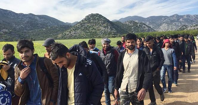 Afganlar 40 yıl sonra 2. büyük göç dalgası ile Türkiyeye akın ediyor