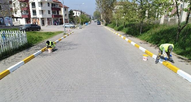 Cadde ve sokaklarda dikkat çeken çalışma