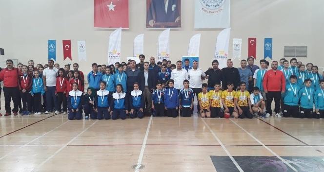 Vanlı badmintoncular Türkiye finallerinde