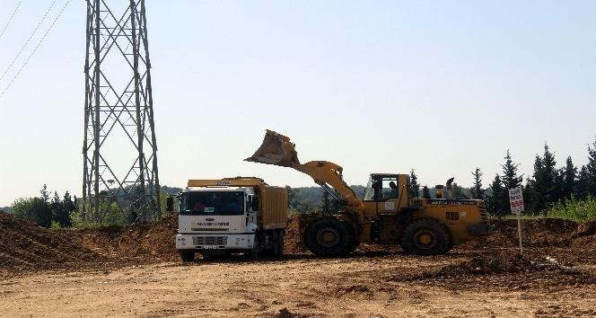 Antalya'da doğa katliamına belediye neşteri
