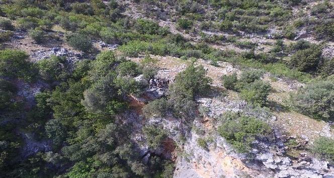 Antalya'da kaybolan yaşlı adam havadan ve karadan aranıyor