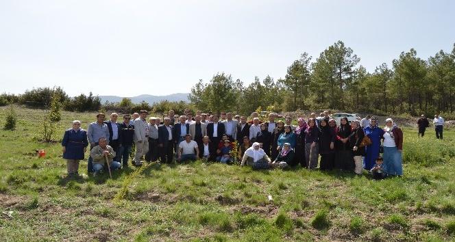 AK Partiden 15 Temmuz Şehitleri Hatıra Ormanı