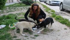 Okul müdiresi her gün sokak hayvanlarını besliyor