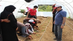 Toprak İşleme Mesleki Eğitim Kursu devam ediyor