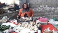 TKDKdan aldığı destekle ürettiği mantarları pazarda satıyor