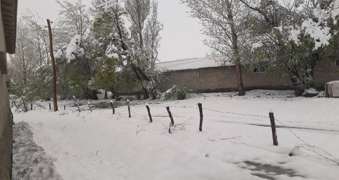 Yüksekovada kar yağışı