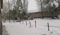 Hakkari'de kar sürprizi!
