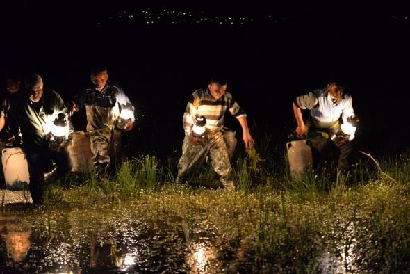 Gece onları gören şoke oluyor!