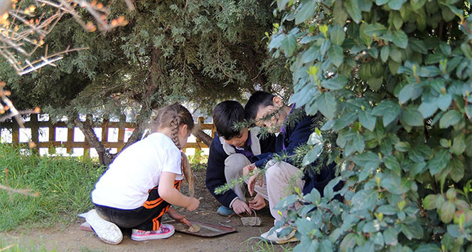 Okullarda çocuklar için toprak bahçe kullanımı artıyor