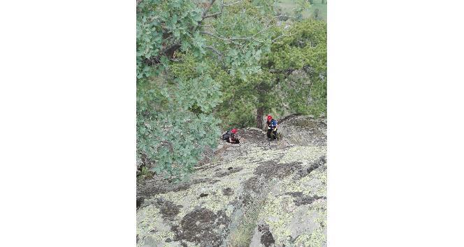 Tosya'da kayalıklarda mahsur kalan köpek, AFAD ekiplerince kurtarıldı