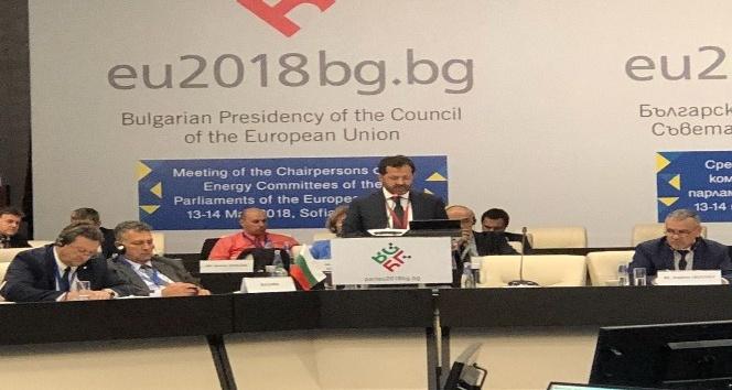 Altunyaldız, AB Parlamentoları Enerji Komisyonu Başkanları Toplantısına katıldı
