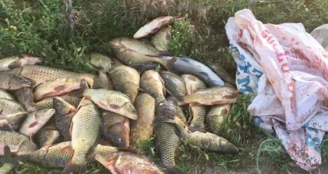 Yasağa rağmen balık avlayan şahıslar jandarmadan kaçamıyor