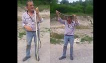 Yılanı hiç korkmadan boynuna doladı
