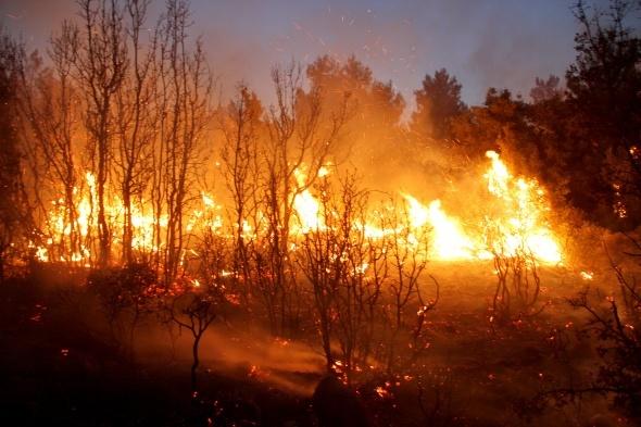 Korkutan yangın! Ekipler harekete geçti