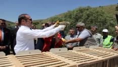 Yozgatta 3 bin 500 kınalı keklik doğaya salındı