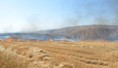 Siirtte 20 anız yangınına müdahale edildi