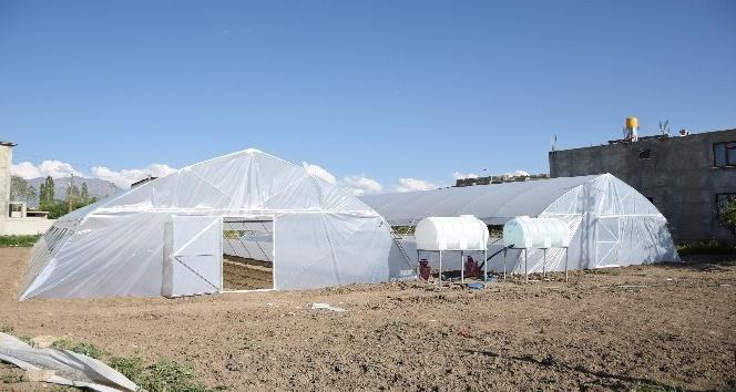 İpekyolu Belediyesinden tarıma destek