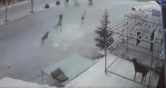 Köpekten kaçan çocuğa otomobil çarptı