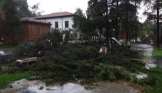 Erbaada sağanak yağış ve fırtına maddi hasara neden oldu