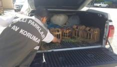 Vanın Gevaş ilçesinde keklik avcılarına ceza