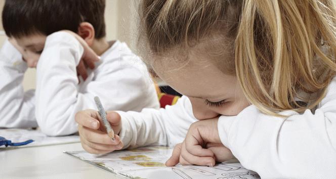 2018-2019 Okullar ne zaman Açılacak Kapanacak? Ara tatil kaç gün olacak?