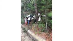 Alkollü sürücü ağaca çarptı