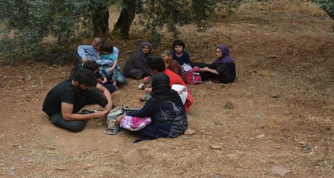 Çanakkalede 20 kaçak göçmen yakalandı