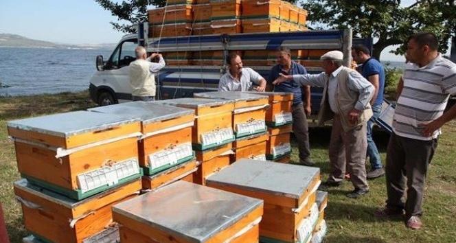 Çanakkalede üreticilere arılı kovan dağıtımına başlandı