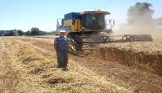 Biçerdöverle hasatta dane kaybı uyarısı