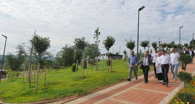 21 çeşit fındık türü Trabzon Botanikte sergilenecek