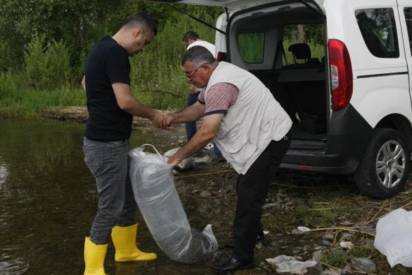 Poşet poşet getirip göle bıraktılar! Bakanlık özel tesislerde yetiştiriyor