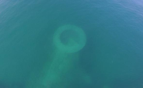 Van Gölü'nde bulundu