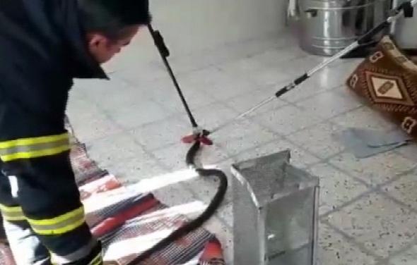Eve giren yılan itfaiye ekiplerine zor anlar yaşattı