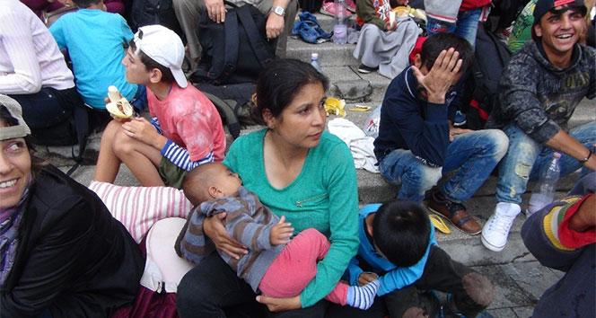 10 binden fazla mülteci çocuk Avrupada kayboldu