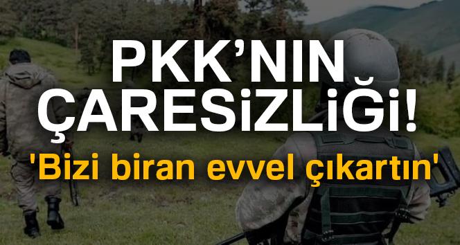 Karadeniz'de PKK Çaresiz Kaldı