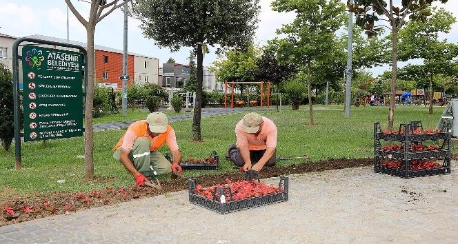 Ataşehir'de parklar hem çoğalıyor hem yenileniyor