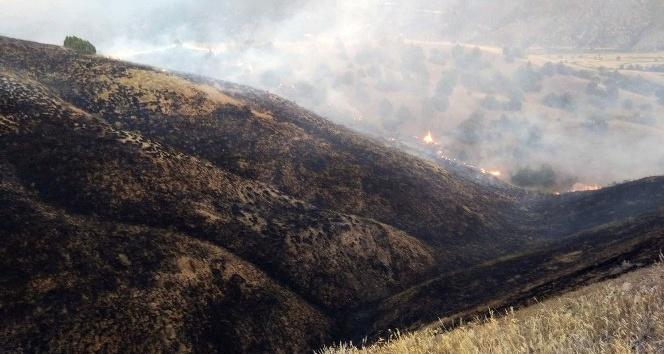 Tosya'da tarım arazisindeki yangında 100 dönüm alan kül oldu