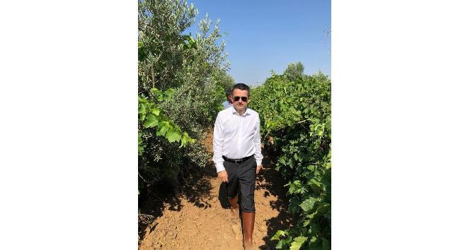 Bakan Pakdemirli hafta sonu mesaisini İzmir'e ayırdı