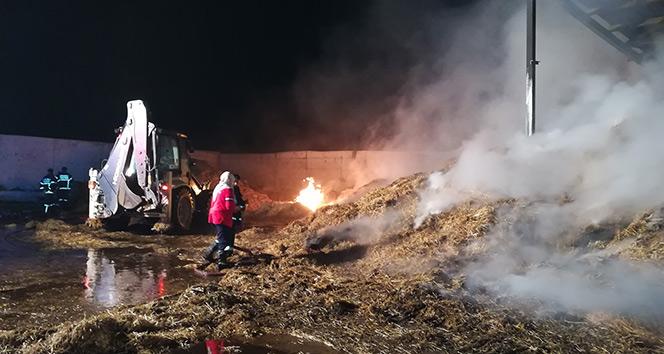 Kocaelide çiftlikte çıkan yangın