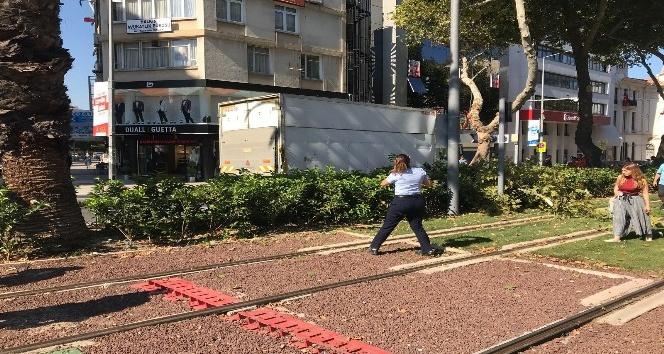 Kamyonet çınara çarptı, tramvay seferleri aksadı