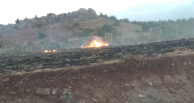 Anız yangınında alevler ormana sıçramadan söndürüldü