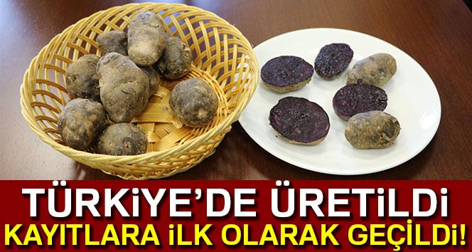 Türkiye'de üretildi! Kayıtlara ilk olarak geçildi