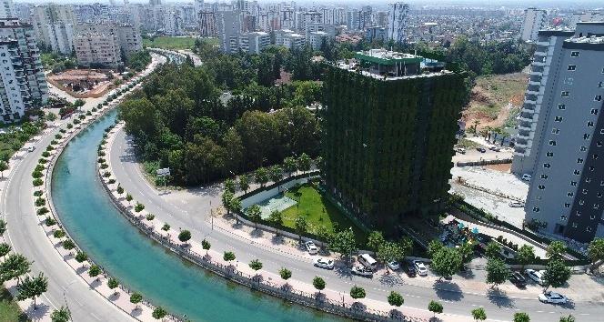 Dört bir yanı sarmaşıklarla kaplı Türkiye'nin tek yeşil apartmanı Adana'da