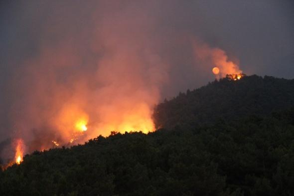 Hatay'da orman yangınında yoğun mücadele