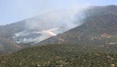 Ormana sıçrayan yangına, uçakla müdahale