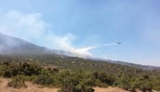Tuncelideki orman yangını söndürüldü